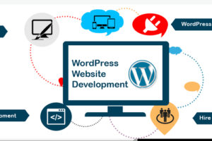 wordpress-webdevelopment-services-500×500